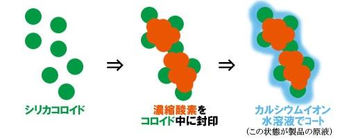 カプリニウムの原理1